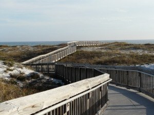 Not actually Myrtle Beach boardwalk. I'm claiming artistic license. This is Destin FL but you get the idea.