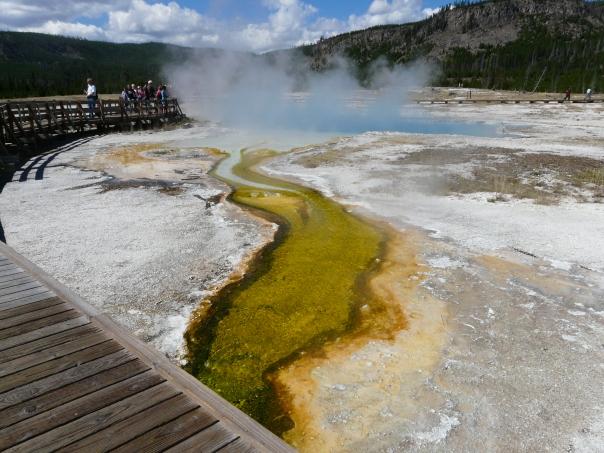 Yellowstone 047