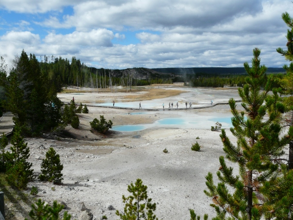 Yellowstone 061