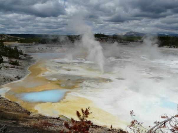 Yellowstone 073