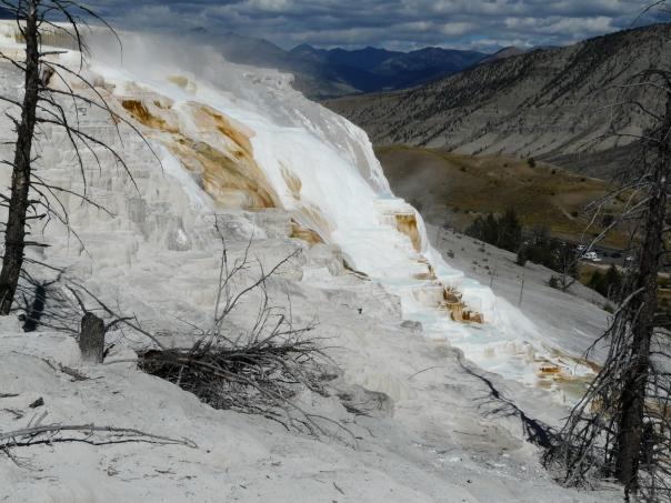 Yellowstone 095