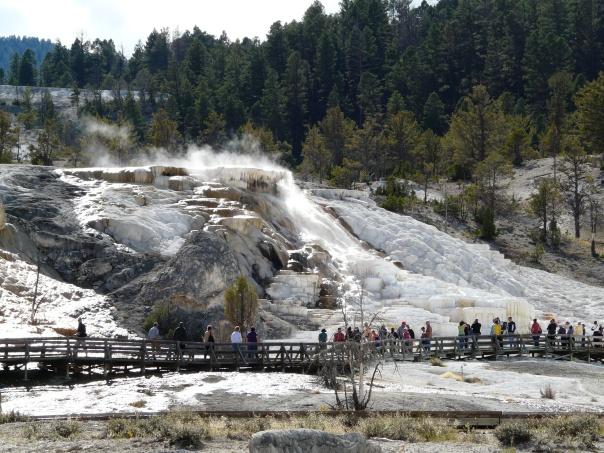 Yellowstone 147