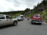 Traffic jam at Glacier National Park