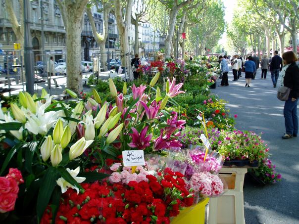 Beziers Flower Market, France