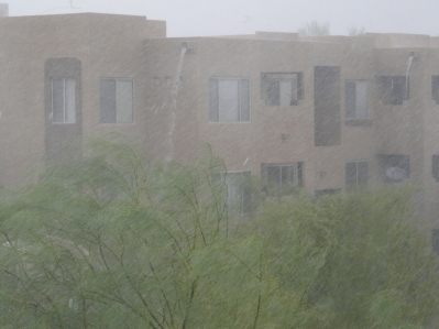 Monsoon rain AZ
