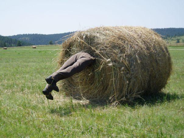 Man in hay bale