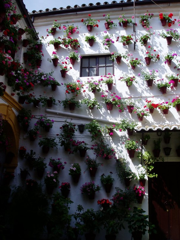 Festival of the Patios, Cordoba, Spain