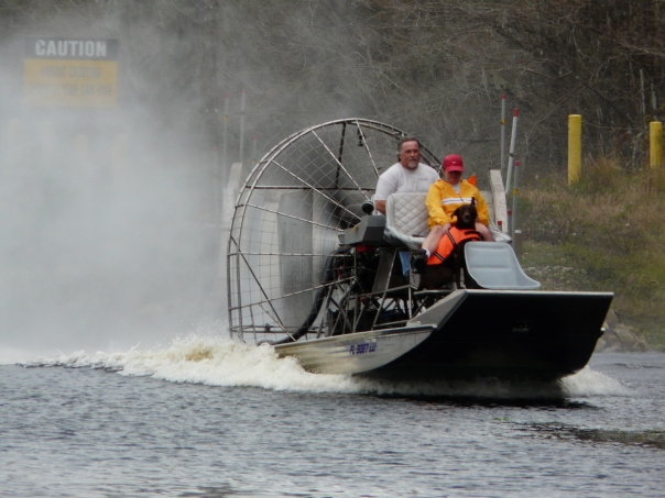 Wild Bill's Airboat Tour on the Withlacoochee River