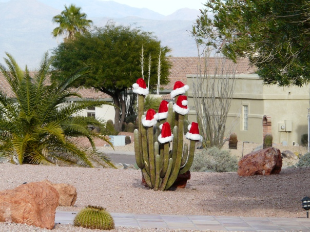 Christmas Arizona USA