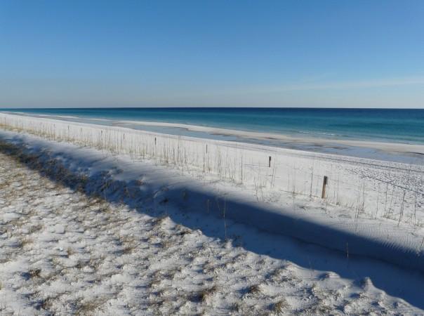 Florida Gulf Coast